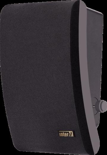 Громкоговоритель SWS-10(B)