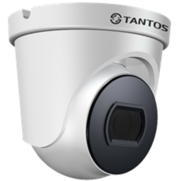 Видеокамера сетевая (IP) TSi-Beco25F